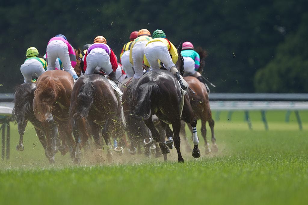 【競馬】大塚海渡騎手のパワハラ訴訟 木村師「大変申し訳ありません」 画像