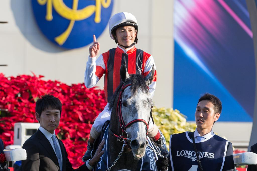 """【競馬】香港国際競走 日本馬の可能性と外国馬の""""穴""""探し 画像"""