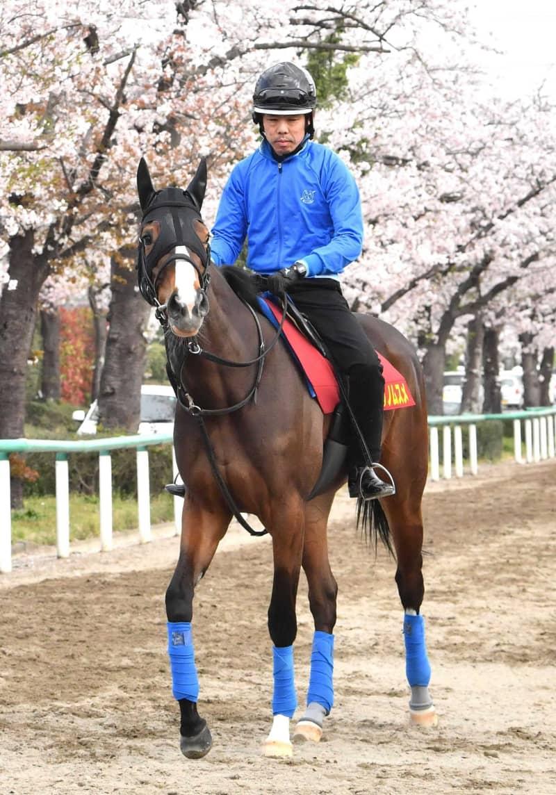【桜花賞】アカイトリノムスメ母子3冠へ 血統文句なし、横山武は手応え十分 画像