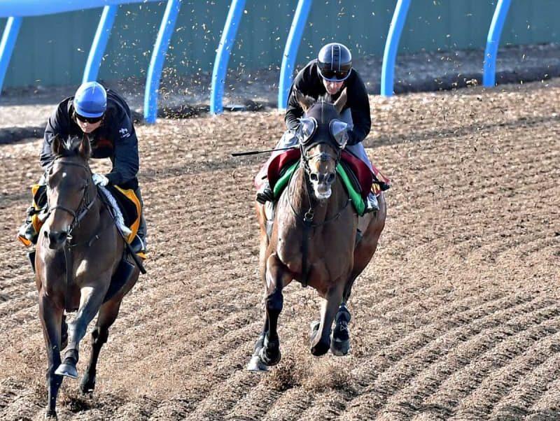 """【ヴィクトリアM】グランアレグリアが""""喝采追い""""ラスト馬なり12.4秒 ルメールは「全部よかった」 画像"""