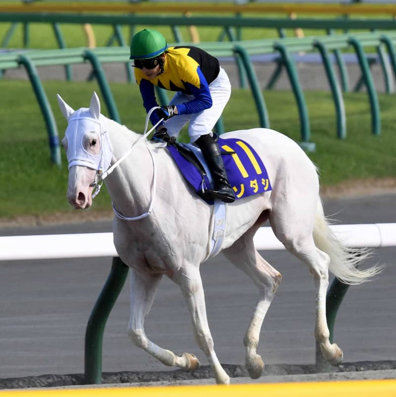 白毛の桜花賞馬ソダシに札幌記念参戦プランが浮上 画像
