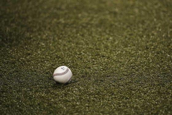 NPB、五輪期間中に「エキシビションマッチ」を開催 計58試合、一部を除き有観客 画像